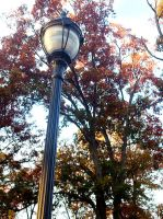 Lamp post thing? by XToxicityX