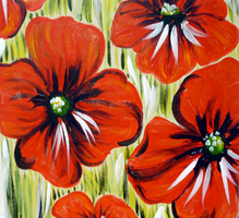 Red Poppies by manicstreetpreacher