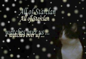 Starclan Wallpaper by BlueTulip012