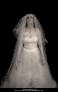 Ghost portrait _Be my Bridegroom ! _Part II by Cendrayliss--Stock