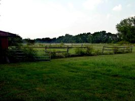 Pasture stock 3 by FairieGoodMother
