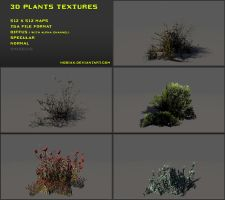 Free 3D plants textures 02 by Nobiax
