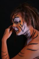 Studio shoot tiger by hoshi-kou