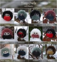 Tiny Owls on Etsy - 2nd Batch by demiveemon