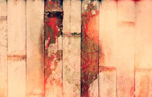 texture 36 by cwiny