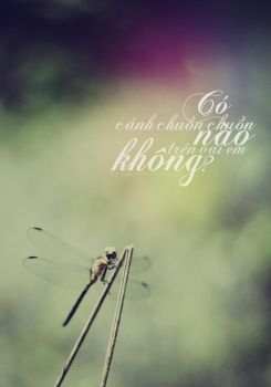 Is there any dragon fly on your shoulder? by KassieMazz