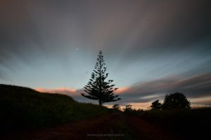 Kiwi Sunset by drewhoshkiw
