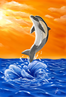 Jumping Dolphin by West017