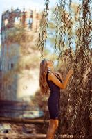 Under the old willows by Swan-Lake