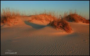 Warming Dunes II by TRBPhotographyLLC