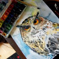 owl (watercolor) by bemain