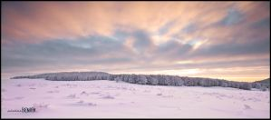 "Aubrac, winter 2010, ""4"" by benisa"