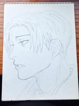 Captain Levi from Attack on Titan by 2846mn