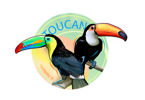 Toucan - digital drawing by eyeqandy
