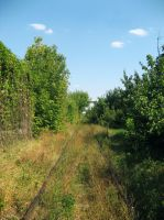 Stock 44 - Abandoned railroad 2 by MariaBilinski