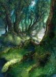 Forest by Narayka