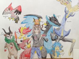 My Pokemon X Team by Ghibli-and-OtakuNess