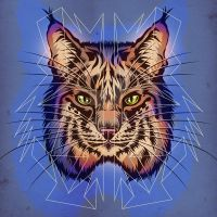 Bobcat by MY-METAL-HAND