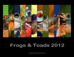 Frogs + Toads 2012 Calendar by hellfirediva