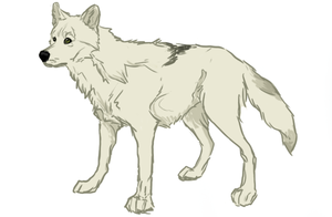 White Wolf by mohiche