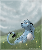 Let it Rain by Skaralett