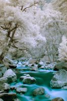 IR H20 by steverobles