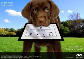 Veterinary day ad by brunoomella