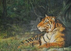 Tiger oil painting by yellow-jim