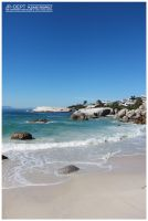 Africa 07: Boulders Beach by JR-Dept