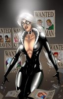 Black Cat Colaboration by RyanMKincaid
