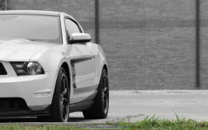 Boss 302 Wallpaper by joerayphoto