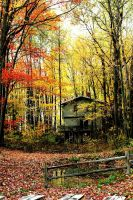 colors change and shift by benthomas