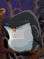 Fat owl... in COLOR by KidGalactus