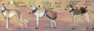 Decorated Sighthound Adoptables 2 - OPEN by PeachesOfWar