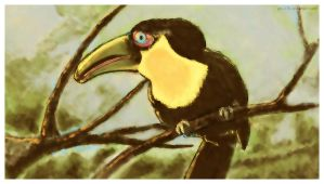 Toucan by gbL078