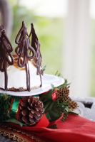 Gingerbread Cheesecake 4 by laurenjacob