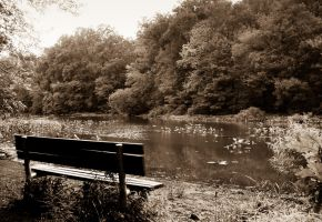 Bench by Keith-D
