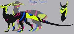 Meadow Tamperhill Temp Ref by May5Rogers99