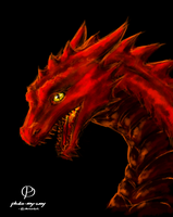another dragon quick draw by pluto-my-way