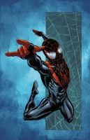 Ultimate Spider-Man by JeremyColwell