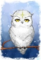 Owl by Ifritus