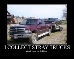 I Collect Stray Trucks by LDLAWRENCE