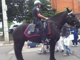 Police horse and police officer by Musicislove12