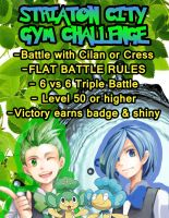 Striaton City Gym Challenge by Dr-Anime