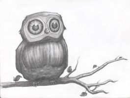 Lauren's Owl... Finally by Sintrinsic