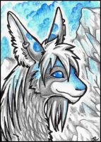 ACEO - Yammers by jrtracey