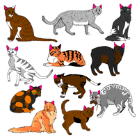 cat adoptables :3 by brambleface9