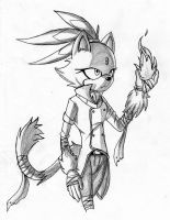 Sonic Boom: Blaze the cat by MakTheHedge01