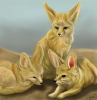 fennec foxes kiriban by heavenhel