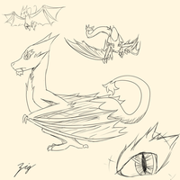 Wyvern Sketchies by The-Zig